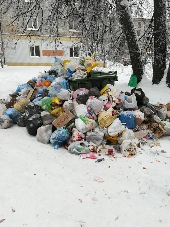 Горы мусора образовались в Димитровграде перед Новым годом