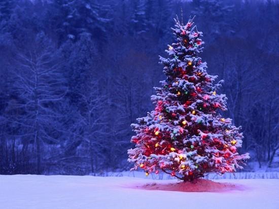 Как встретить Новый год безопасно - рекомендации крымского МЧС