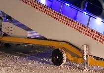 Новогодний авиадебошир рейса Сочи-Москва вырубил стюардессу после виски