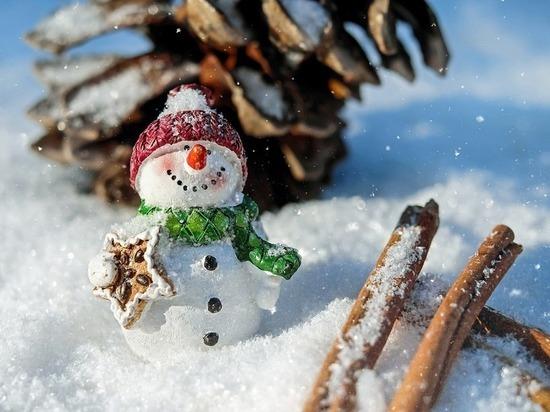 Фестиваль снеговиков пройдет в Казани