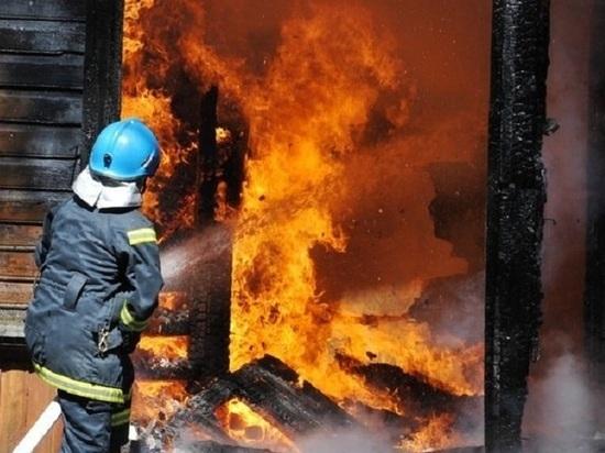Женщина с ребёнком погибли при пожаре в Жердевском районе