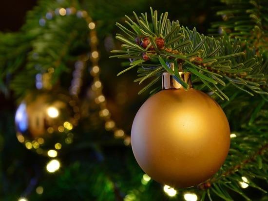 Самой высокой новогодней елкой в СНГ стала ель в Ашхабаде