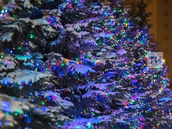 Жителям РТ предлагают оценить новогодние ёлки в районахо