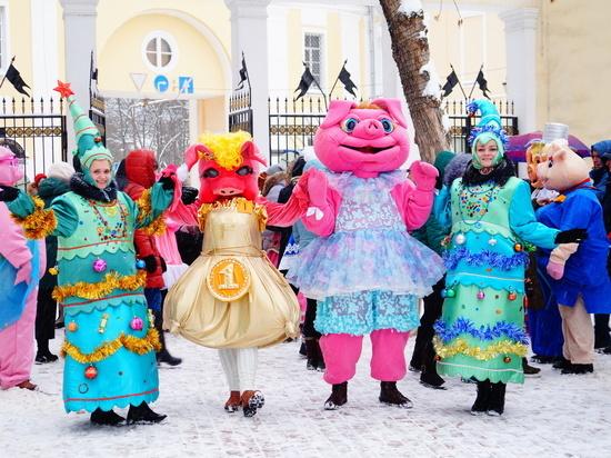 Разнообразных свинок показали в Калуге