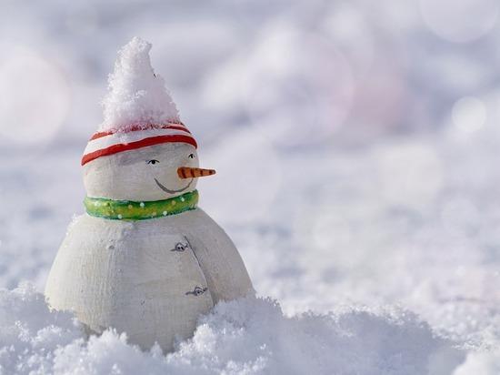 Владимиры приглашаются к участию в конкурсе снежных фигур