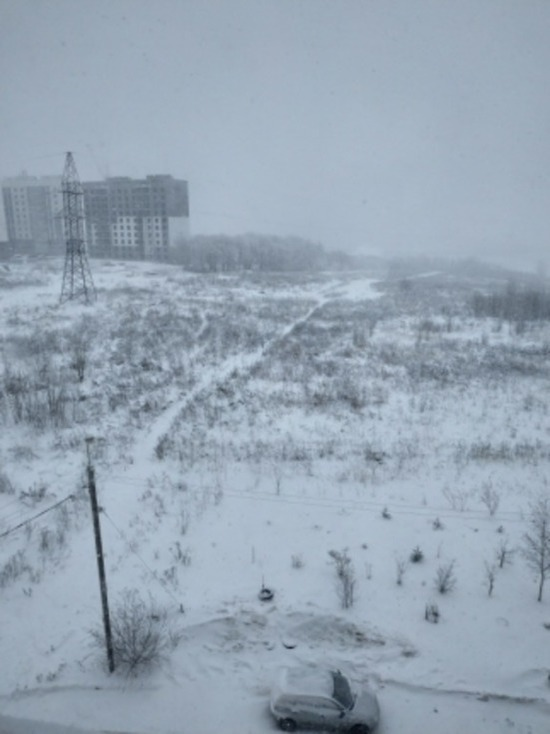 Завтра в Смоленской области возможна метель, около нуля