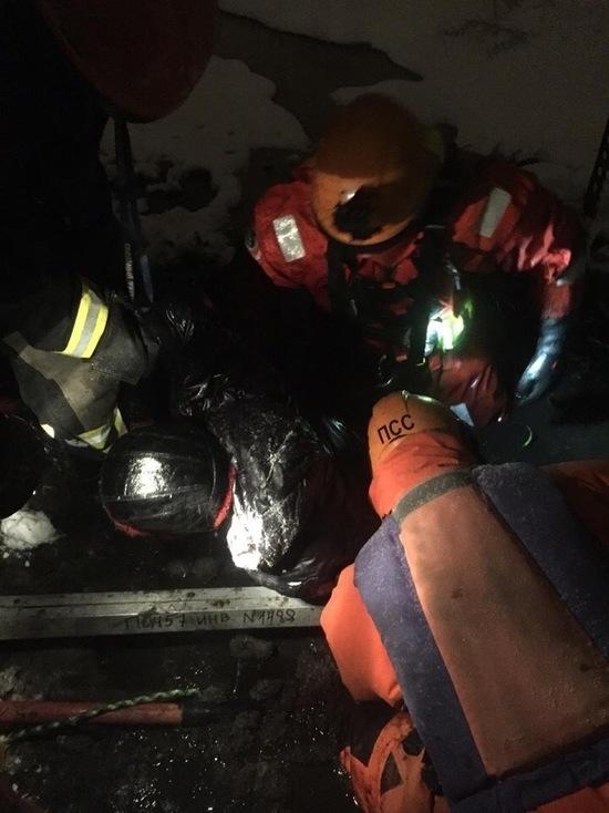 Спасателей вызвали на помощь увязшему в болоте петербуржцу