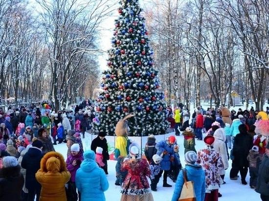 На пятое января в Иванове запланировано множество развлечений