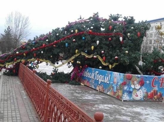 В калмыцкой столице свалилась главная елка республики