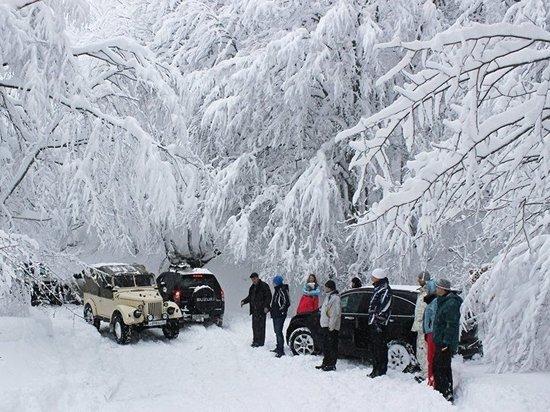 На новогодние праздники в Крым приехало на 42% туристов больше