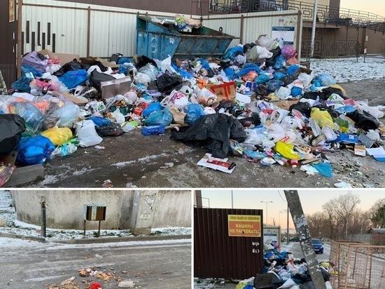 Экстренные меры не спасли Калининград от «мусорного коллапса»