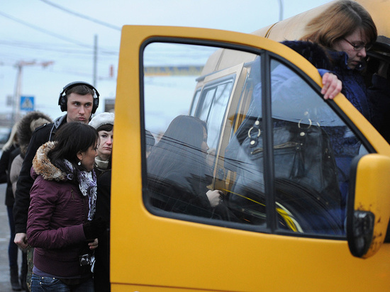 Димитровградцы будут платить за проезд больше ульяновцев - 23 рубля