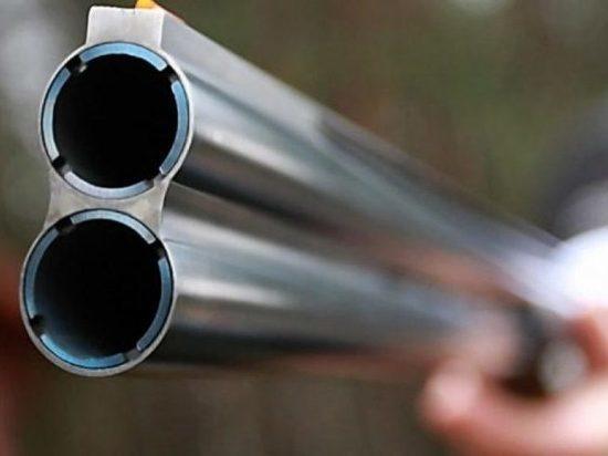 В Мордовии браконьер застрелил лося