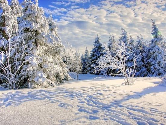 Калужские синоптики дали рождественский прогноз
