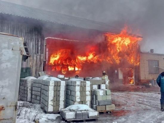 За год в Смоленской области произошло почти 1000 пожаров