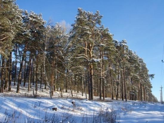 Завтра, 7 января, в Смоленской области до минус 14-ти градусов мороза