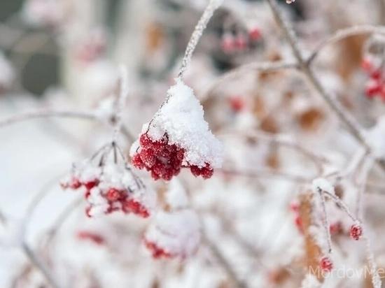 Вночь перед Рождеством вБрянскую область придет 15-градусный мороз