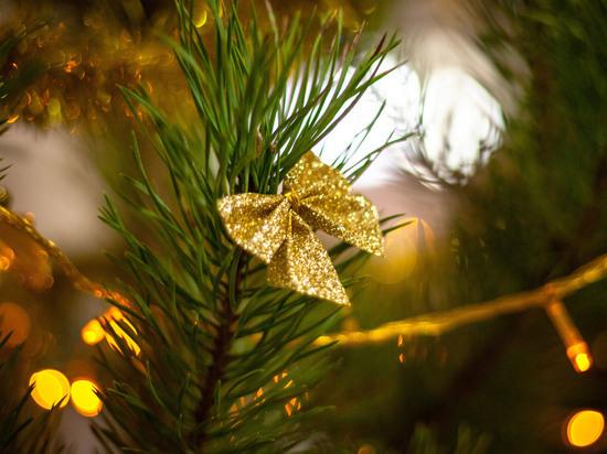 На саранских площадях отметят Рождество