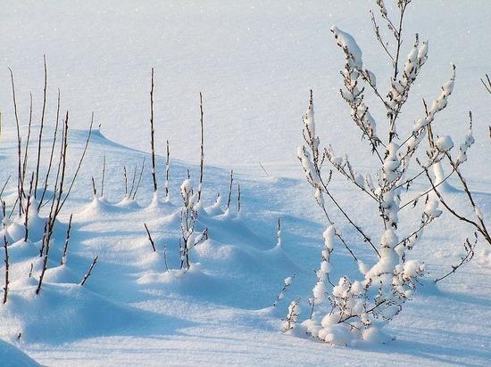 В Татарстан пришли Рождественские морозы