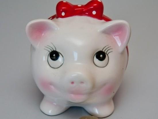 Волгоградцы узнали о чертах характера людей, рожденных в год Свиньи