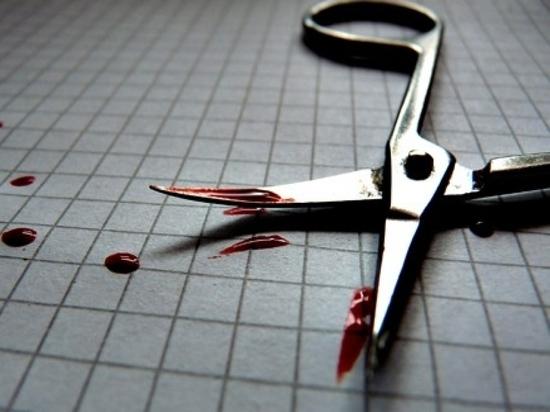 Ульяновец с психическими отклонениями убил свою мать ножницами