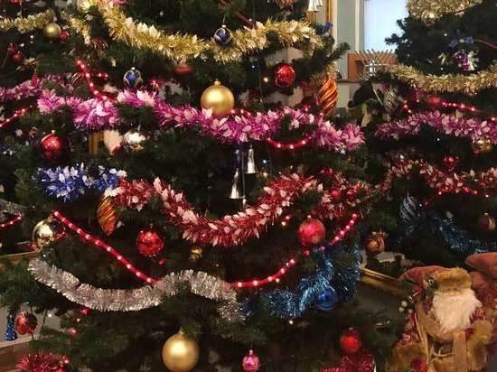Новый год в «Кащенко»: Дед Мороз посетил «палату №6»
