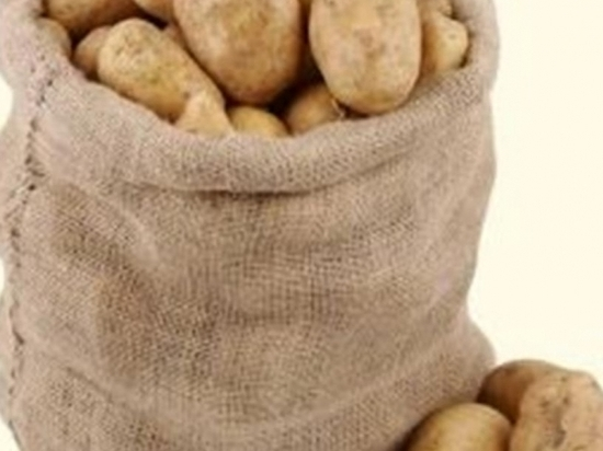Биолог рассказал волгоградцам, как можно получить урожай картофеля дважды в год