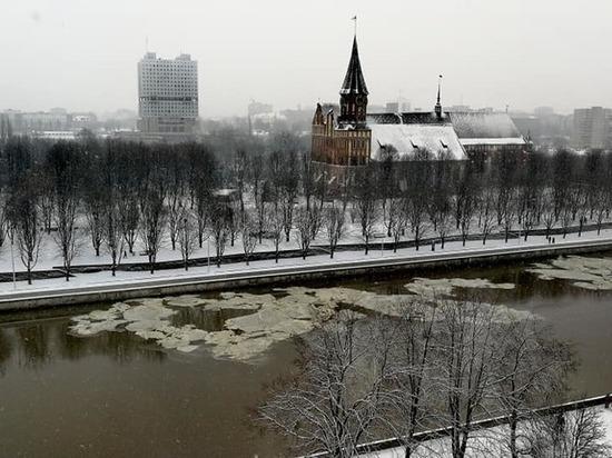 Очевидцы: В центр Калининграда по Преголе приплыло странное вещество