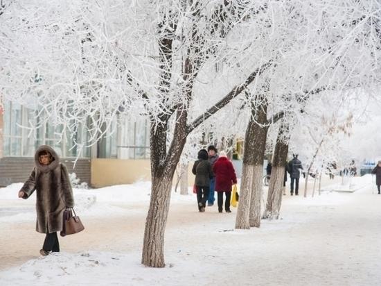 В первый рабочий день года в Волгограде будет -11 градусов