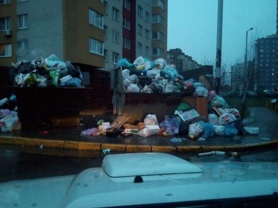 В Калининграде сожгли еще три неубранные свалки