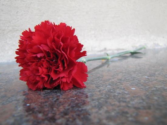 Тверской губернатор поздравил жителей Пено с 77-й годовщиной освобождения от немецко-фашистских захватчиков
