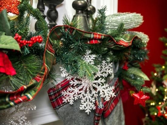 В интернете стали предлагать услуги по разбору новогодней елки