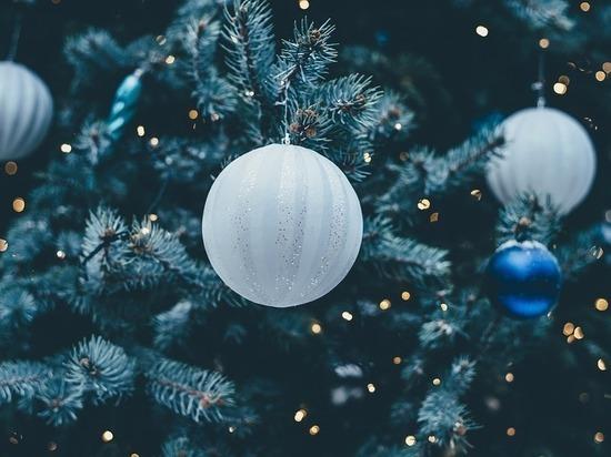 Архиерейская Рождественская елка пройдет в Краснодаре
