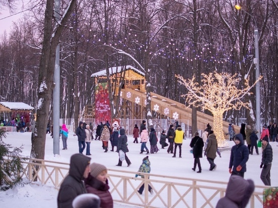 Рязанская область станет Новогодней столицей 2020 года