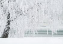 Минобрнауки РТ подготовило рекомендации для школ в связи с холодами