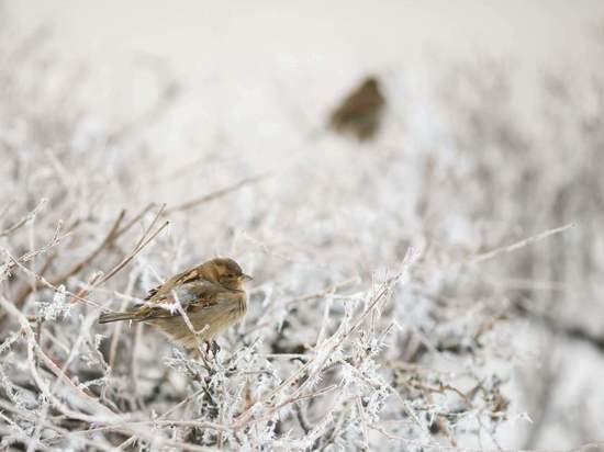 Радиационную обстановку в Волгоградской области признали нормальной