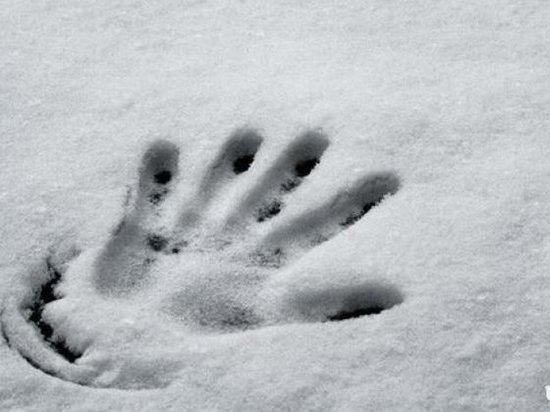 В центре Москвы насмерть замёрзла пенсионерка