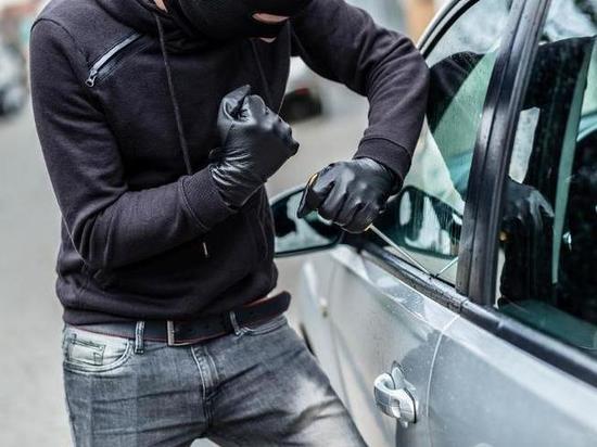 Тамбовские полицейские вместе с коллегами из Липецка задержали двух автоугощиков