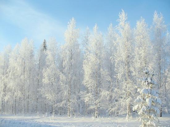 День снега отметят в Калуге