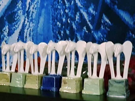 «Белого слона» за лучший фильм «Война Анны» получил Алексей Федорченко