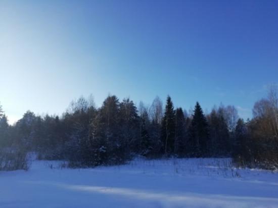 Сегодня на Смоленщине до минус 12 мороза, небольшой снег