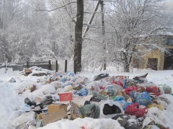 Жители военного городка под Калугой возят мусор на рейсовых автобусах в районный центр