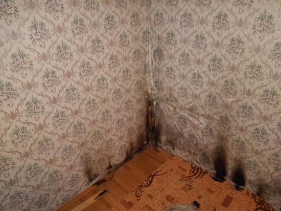 Борясь с тараканами, рязанка чуть не сожгла квартиру
