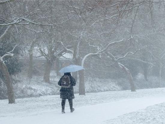 Небольшой снег и метелица ожидают жителей Чувашии в выходные