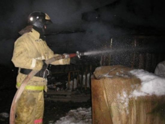 В Смоленском районе пожарные спасли из огня восемь кроликов