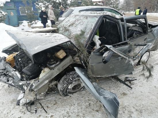 В Тверской области водитель повалил сосны и опрокинул бетонный столб