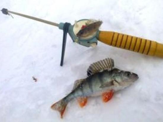 В Иванове пройдет чемпионат города по зимней рыбной ловле
