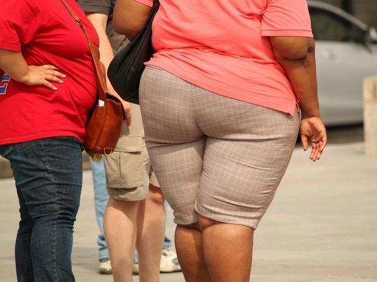 Английские учёные: лишний вес приводит к «усыханию» мозга