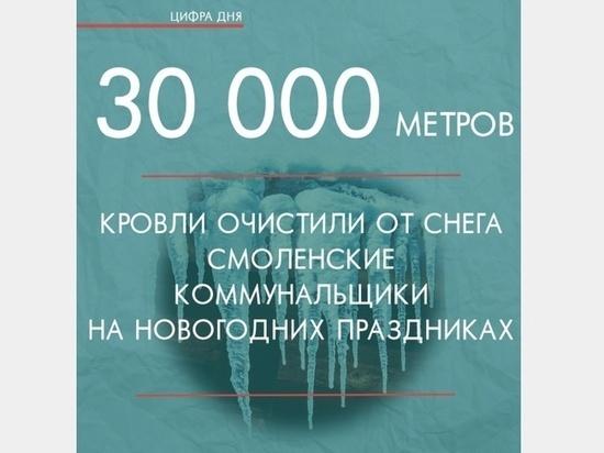 В Смоленске более 700 человек убирают от снега дворы и кровли домов