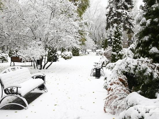 В Воронеже снегопад продолжится до конца выходных